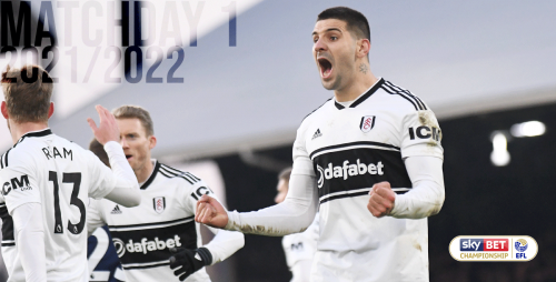 Mitrovic playing for Fulham